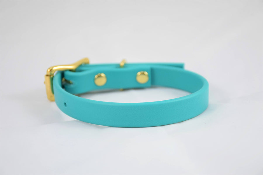The Halfling BT Collar: Teal & Brass Biothane Dog Collar