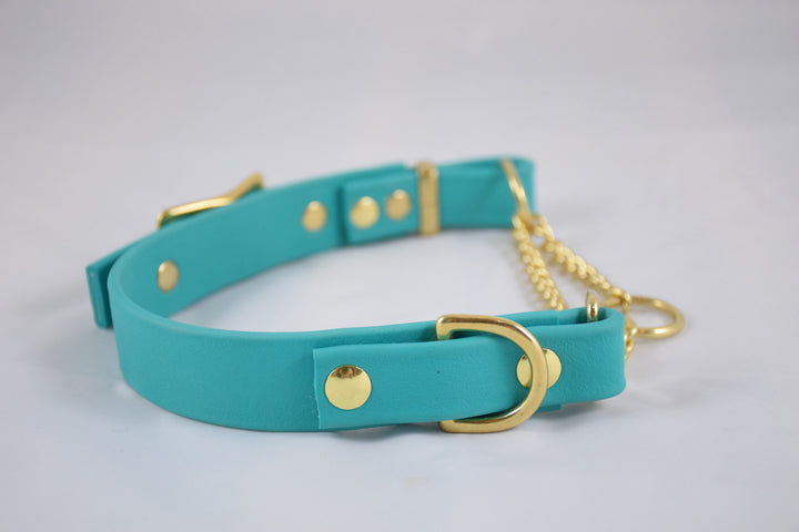 The Rohirrim BT Collar: Teal & Brass Adjustable Biothane Martingale Dog Collar