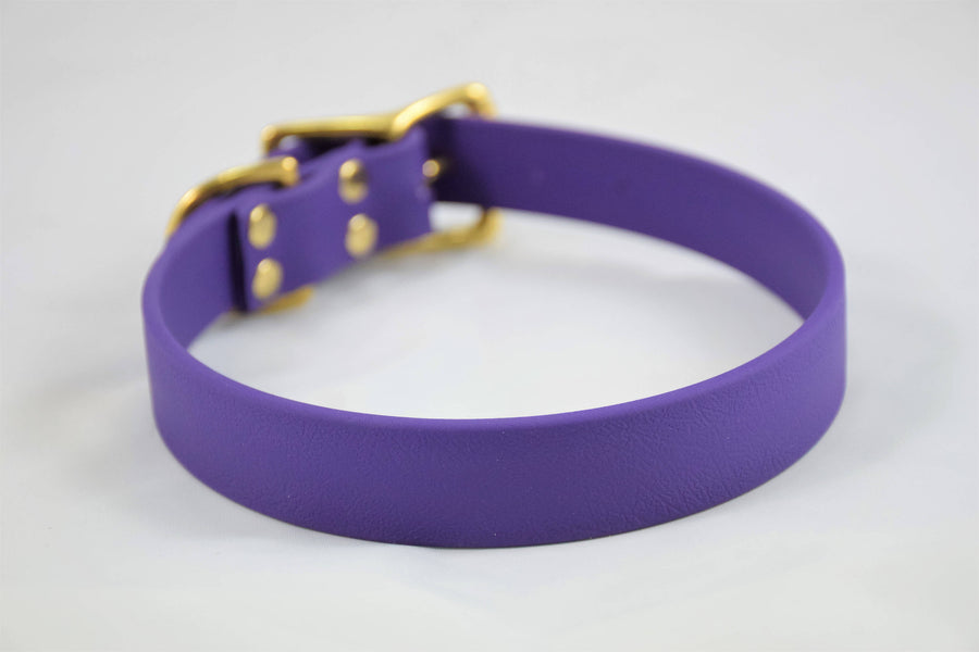 The Elessar BT Collar: Purple & Brass Biothane Dog Collar
