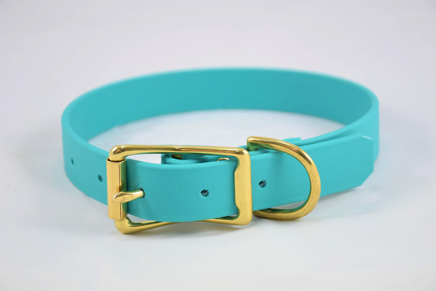 The Elessar BT Collar: Teal & Brass Biothane Dog Collar