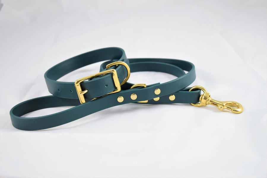 Biothane & Brass Dog Leash - Forest Green