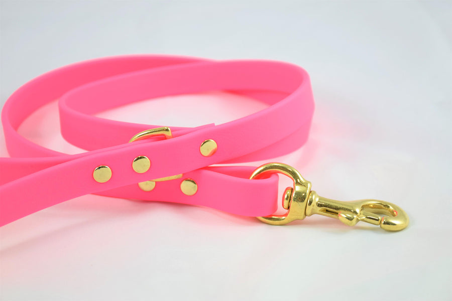 Biothane & Brass Dog Leash - Hot Pink