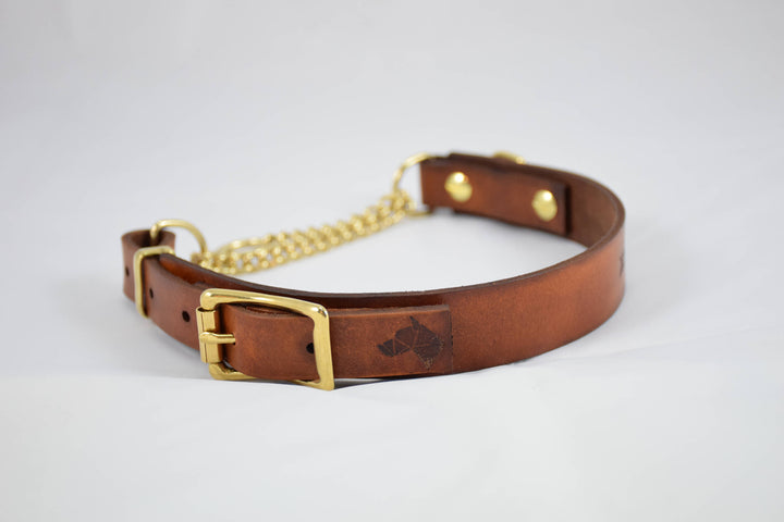 The Rohirrim Collar: Timber & Brass Adjustable Leather Martingale Dog Collar