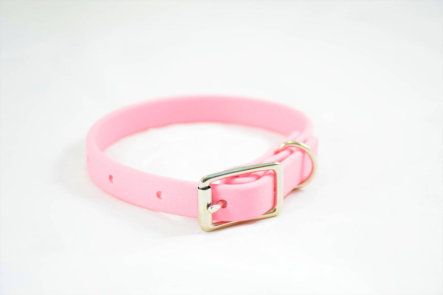 Design Your Own - The Underhill BT Collar, Nickel Biothane Dog Collar
