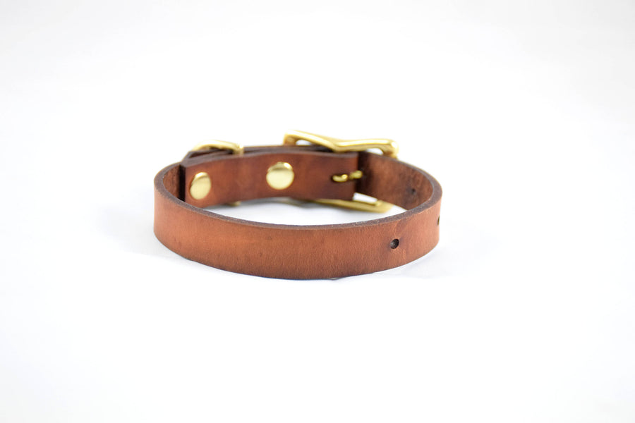 Design Your Own - The Halfling Collar, Leather Dog Collar