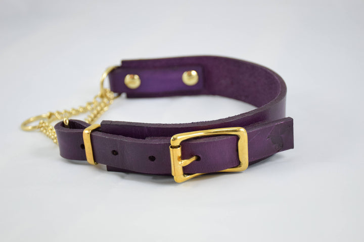 The Rohirrim Collar: Deep Violet & Brass Adjustable Leather Martingale Dog Collar