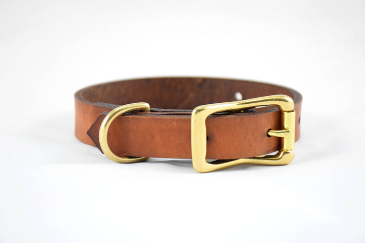 The Halfling Collar: Timber Brown & Brass Leather Dog Collar
