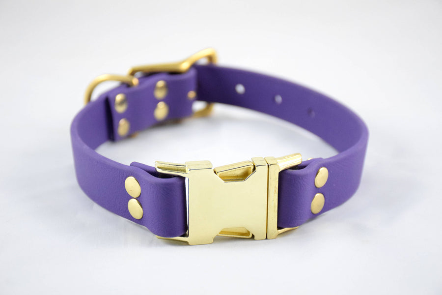 The Elessar QR BT Collar: Purple & Brass Biothane Dog Collar