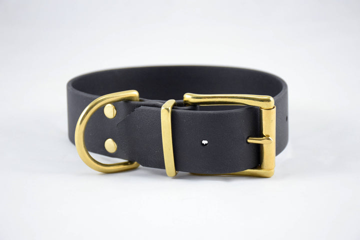 The Undomiel BT Collar: Black & Brass Biothane Dog Collar