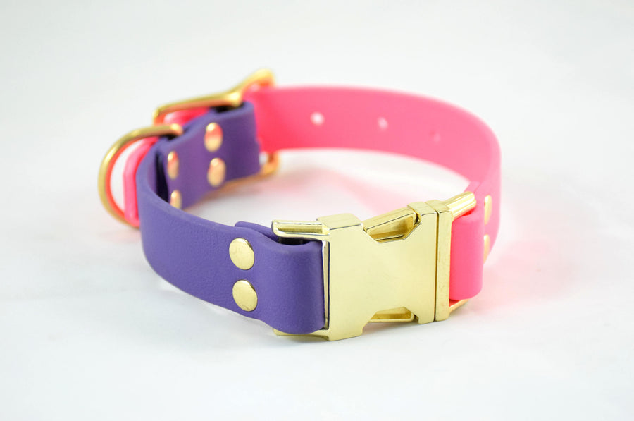 The Elessar QR BT Collar: Hot Pink & Purple w/ Brass Biothane Dog Collar