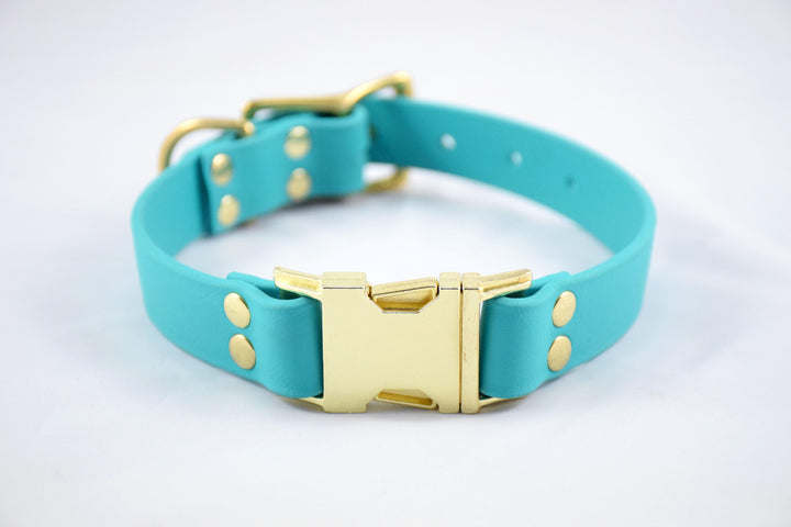 Design Your Own - The Elessar QR BT Collar, Biothane & Brass Dog Collar