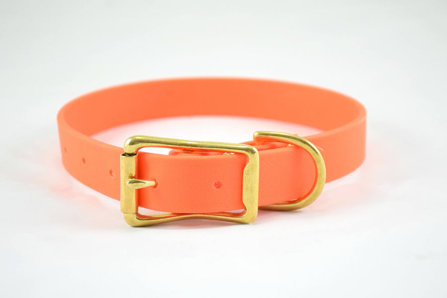 The Elessar BT Collar: Orange & Brass Biothane Dog Collar