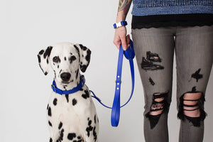 Design Your Own: The Anduril BT Collar, Adjustable Biothane Martingale Dog Collar