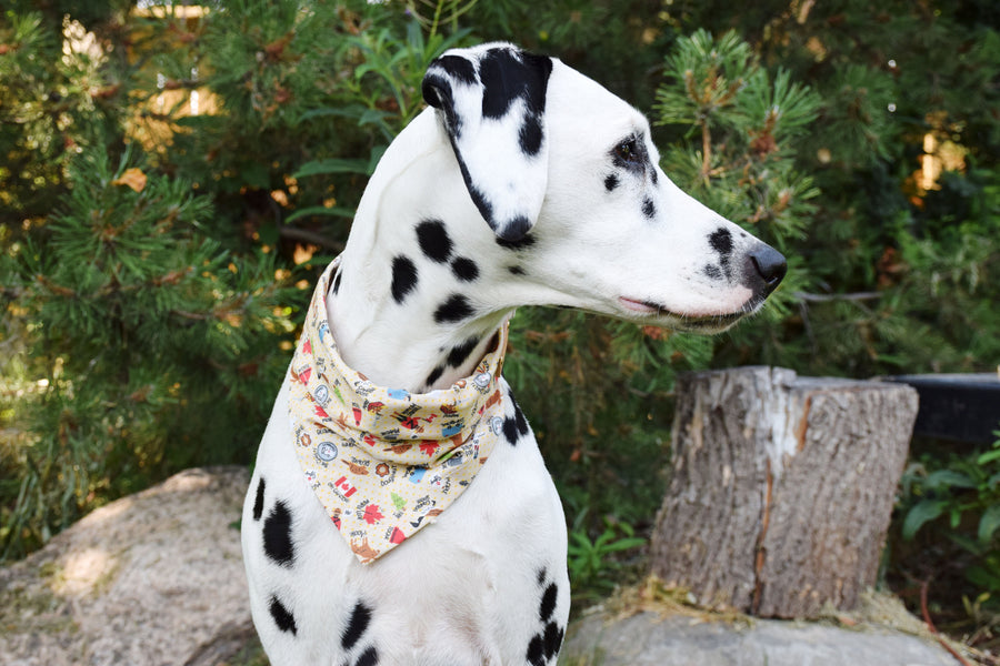 Dog Bandana - Canadian Icons Cotton Dog Scarf, Pet Bandana, Dog Scarf