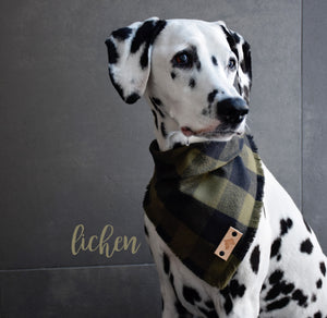 LICHEN Fringed Flannel Dog Bandana - Snap/Tie On Cotton Scarf