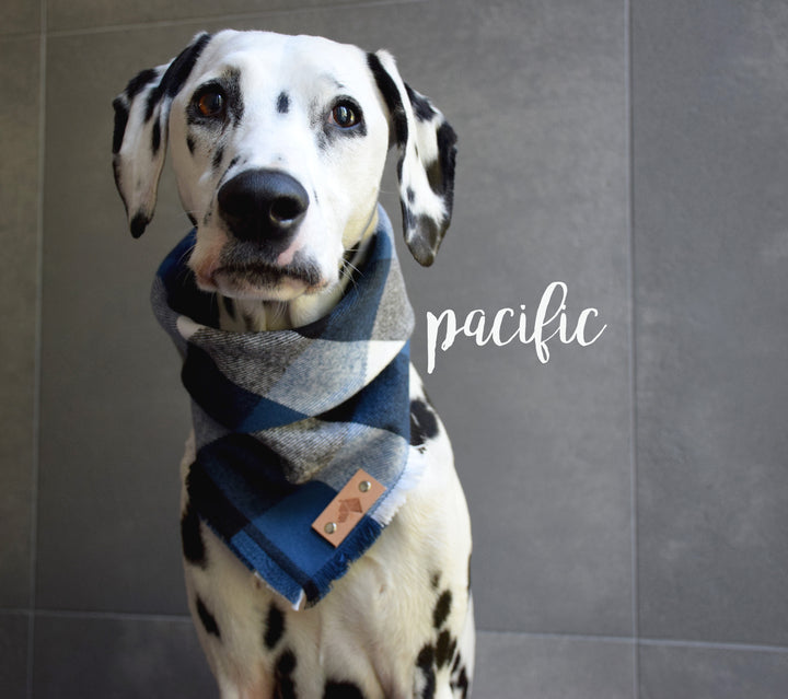 PACIFIC Fringed Flannel Dog Bandana - Snap/Tie On Cotton Scarf