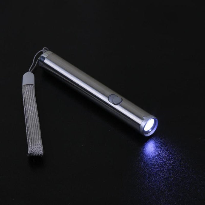 Dog Toy Laser Pointer Pen