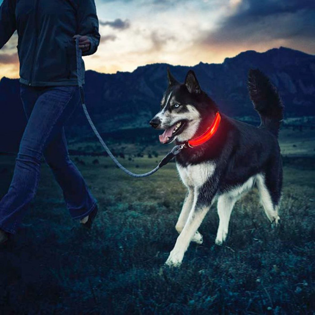 Luna - Rechargeable LED Safety Collar