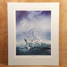 Load Image into Gallery Viewer, SIGNED Art PRINT ~ Howard CONNOLLY ~ SEAGULLS Seascape *