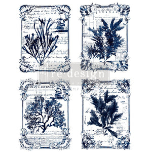 Redesign Decor Transfer - Seaweed
