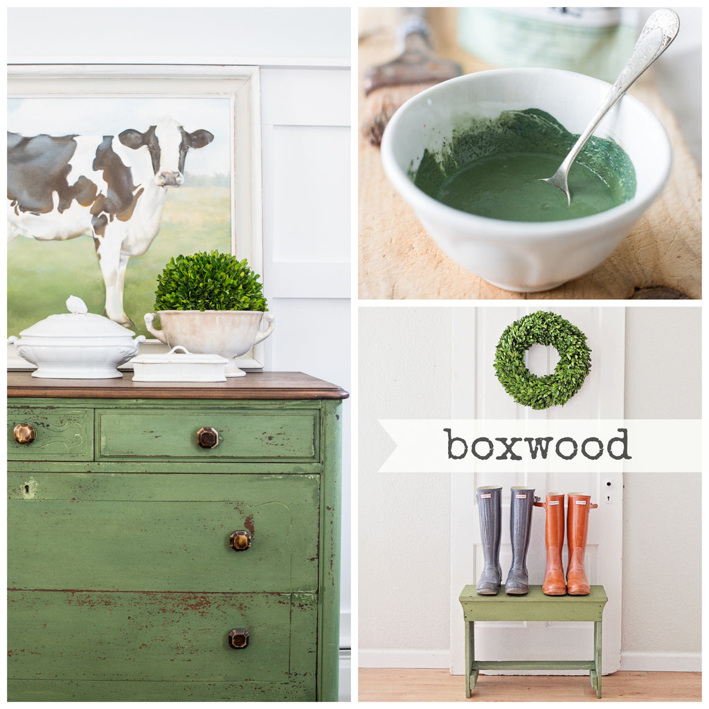 Boxwood - Miss Mustard Seed's Milk Paint