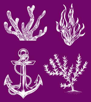 Nautical Silkscreen Stencil Package - Belles And Whistles