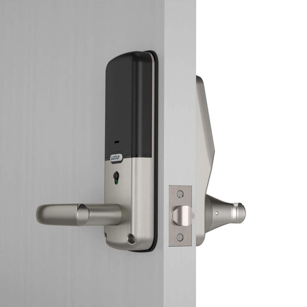 LOCKLY Secure Pro