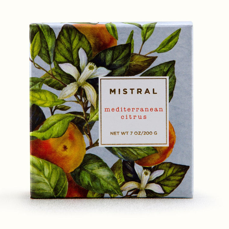 Mediterranean Citrus Holiday Bar Soap