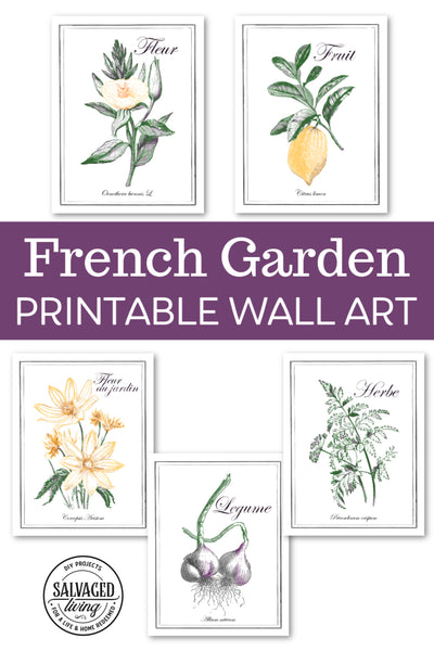 From The Garden/du Jardin French Garden Wall Art Prints