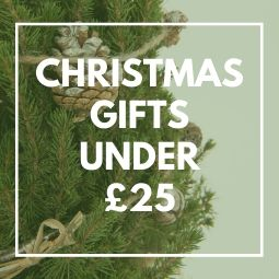 6 Eco-Friendly Christmas for Gifts Under £25