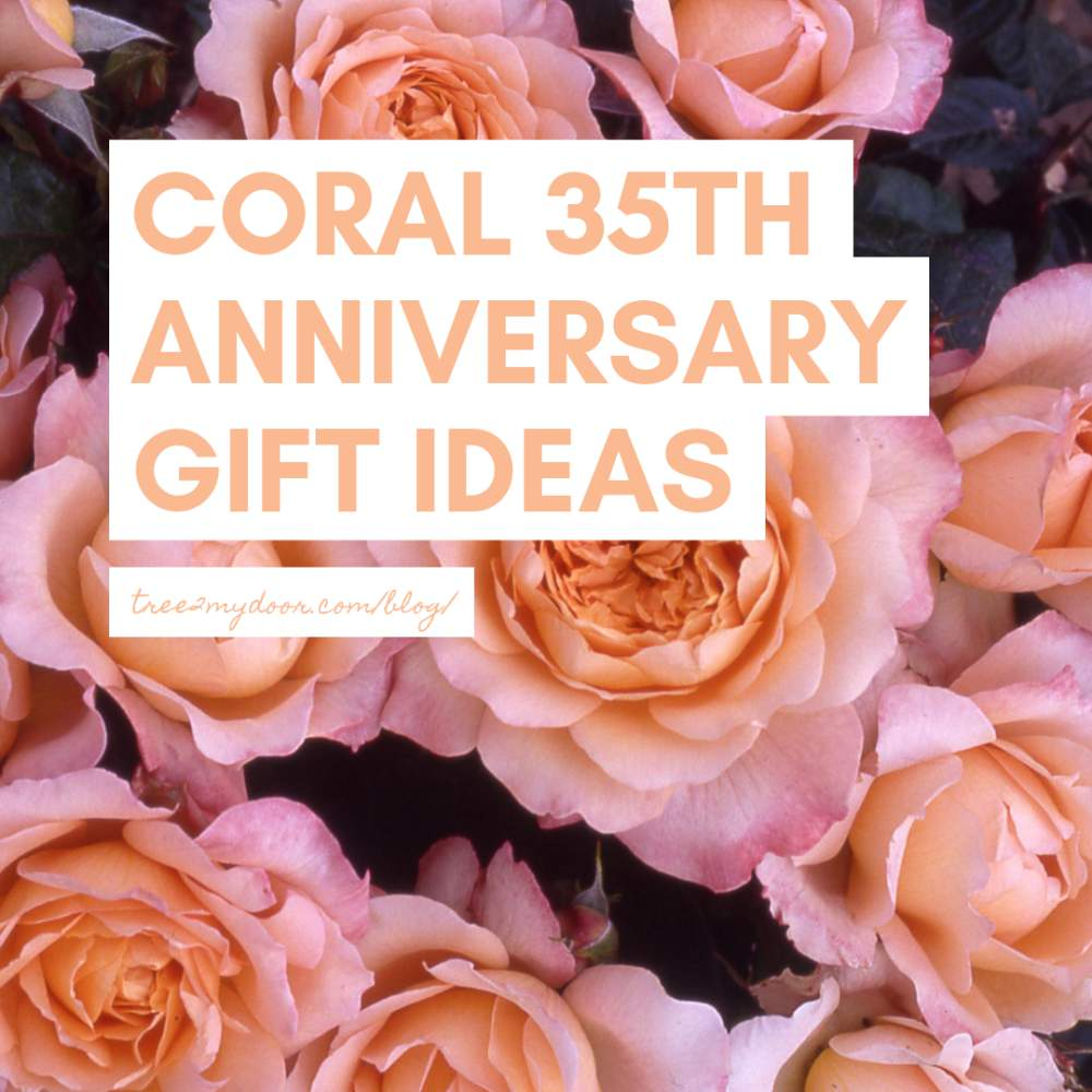 Coral 35th Wedding Anniversary Gifts Ideas