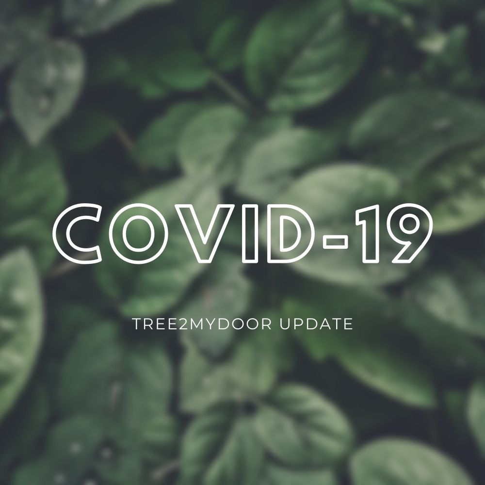 COVID-19 Tree2mydoor Update