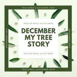 December MyTree Story 2019