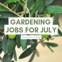 Gardening Jobs for July