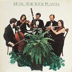 Music for Plants? You Must be Joking....