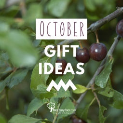October Gifts Guide
