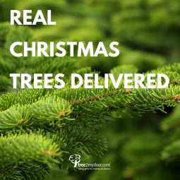 Real Christmas Trees Delivered 2020