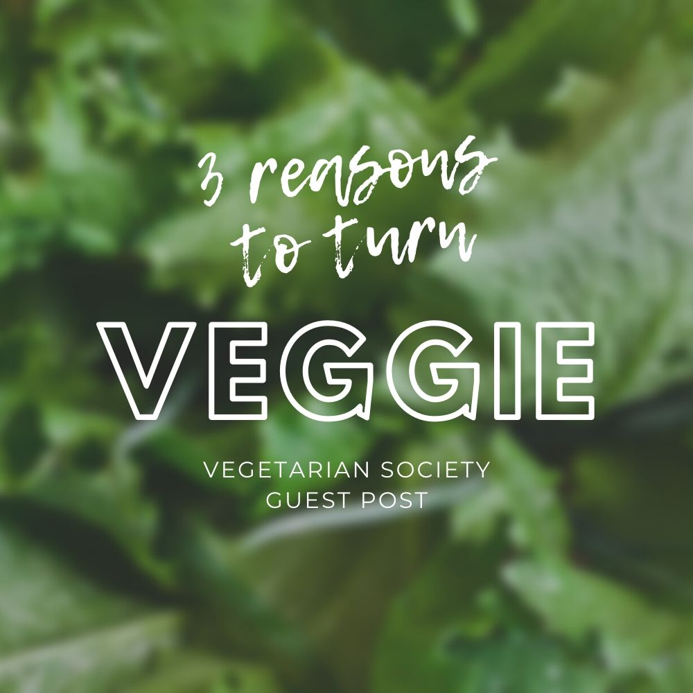 3 Reasons to Turn Veggie + Easy Recipes (Vegetarian Society)