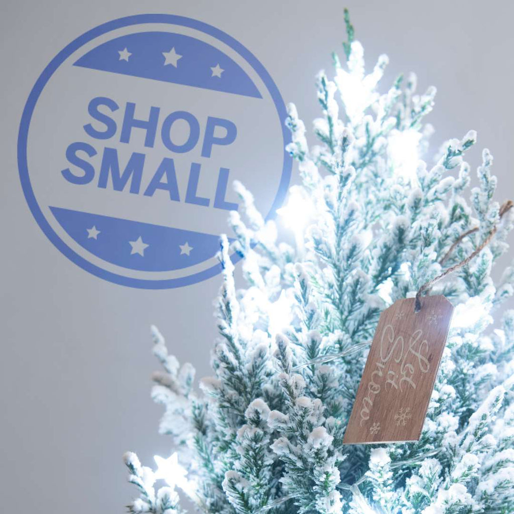 Shop Small 2020 with American Express