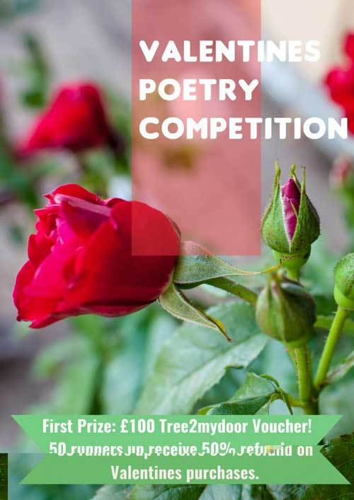 Valentines Day Poetry Competition 2016 - Read Previous Entries