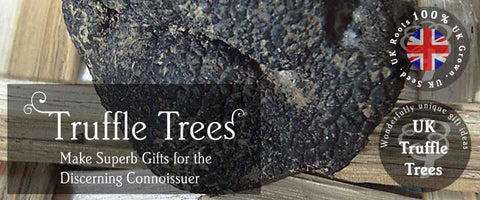 Truffle Tree Gifts