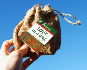 Love in a Bag Seed