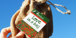 Love in a bag seed gift