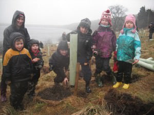 Tree Planting in The White Rose Forest