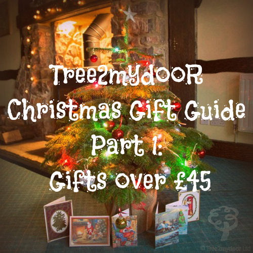 Christmas gift guide £45 and over