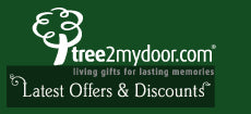 Latest Offers and Discounts
