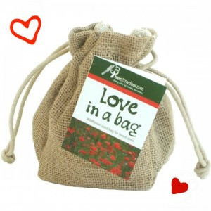 Send some Love in a Bag today