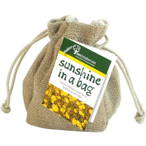 Sunshine in a Bag Delivered
