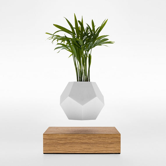 Floating Plant Pot by FLYTE