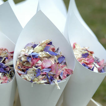 Real Flower Petal Confetti